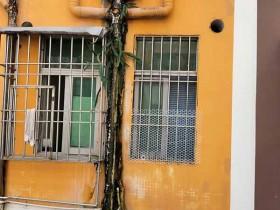 松岗街道高空作业维修排水管